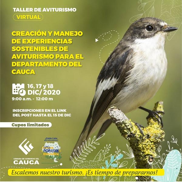 Post_facebook_turismoterritoriodepaz_aviturismo-01-01.jpg